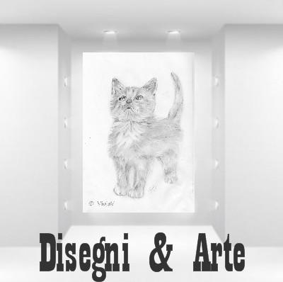 disegni gattini