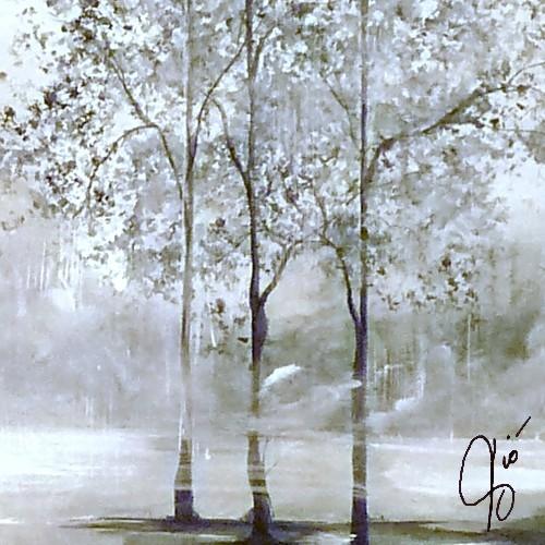 alberi sotto la pioggia